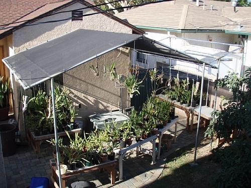 customer_photo33 diy shade house plans house list disign,Shade House Plans